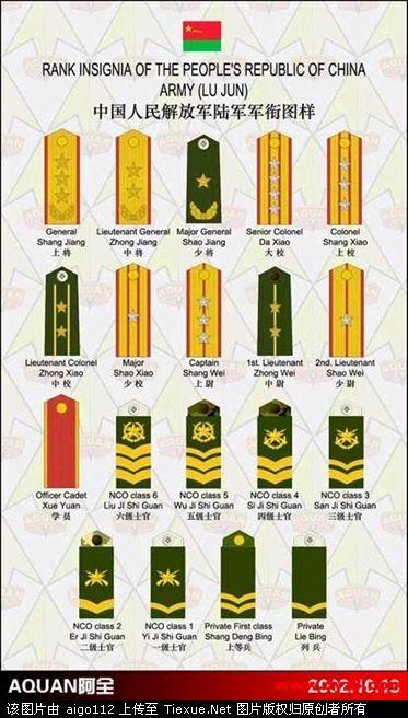 经典 中国人民解放军三军最新式军衔肩章